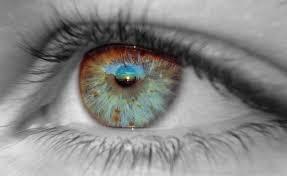 Катаракта и глаукома: современные методы лечения